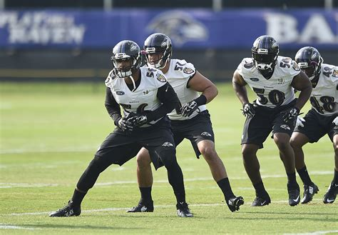 Nfl Baltimore Ravens Jumal Rolle Jerseys Wholesale