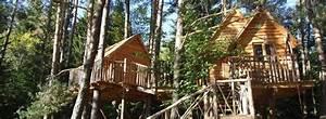 Comment Construire Une Cabane à écureuil : comment construire une cabane dans un arbre newzy executive ~ Melissatoandfro.com Idées de Décoration