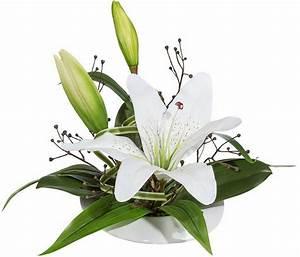 Lilie Topfpflanze Kaufen : kunstblumen online kaufen k nstliche deko blumen otto ~ Lizthompson.info Haus und Dekorationen