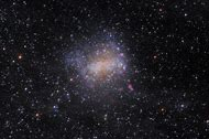 Barnard's Galaxy NGC 6822