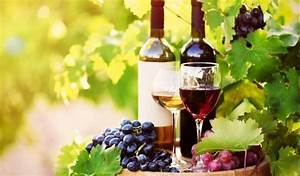 Yarra Valley Private Winery Tours | Bilbytravel Private ...