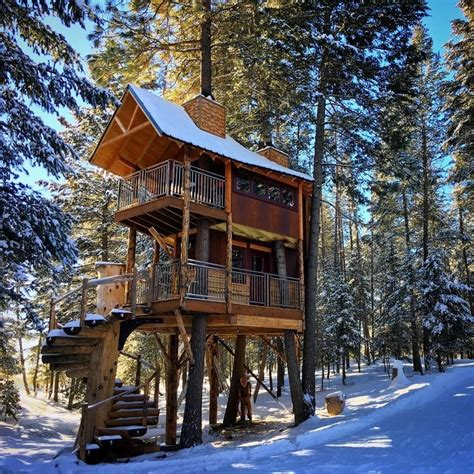 montana treehouse retreat modern home  whitefish montana  dwell