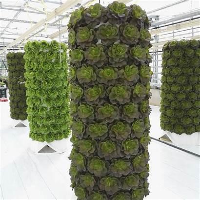 Vertical Hydroponic System Nft Garden Barrel Greenhouse