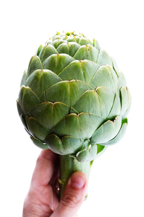 Images Of Artichokes How To Cook And Eat An Artichoke Gimme Some Oven