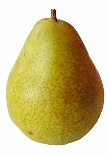 Pear Pictures - Freaking News  Pear