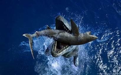 Sea Liopleurodon Monsters Prehistoric Adventure Itl Widescreen