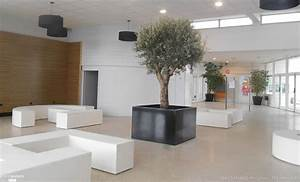 Gros Pot Pour Olivier : le bac arbre indoor image 39 in atelier so green bacs image 39 in c t maison ~ Melissatoandfro.com Idées de Décoration