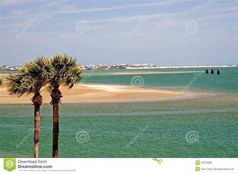 Palm Trees And Florida Bay Royalty Free Stock Images