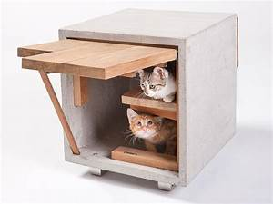 Designs, For, Felines, 12, Cool, Cat, Houses