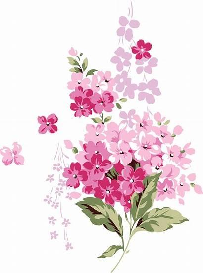 Cicek Flowers Pink Lilac Transparent