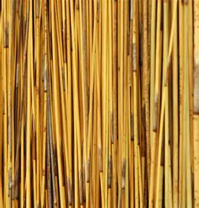 African Reed Thatch