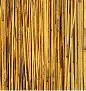 "Home / African Thatch Reed Panels 31"" x 18"" (6 Pack)"