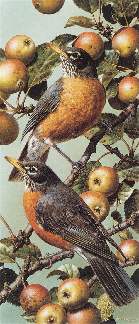 Find over 100+ of the best free bird images. Red Robins by Carl Brenders | Beautiful BIRDS | Bird art, Watercolor bird, Bird drawings
