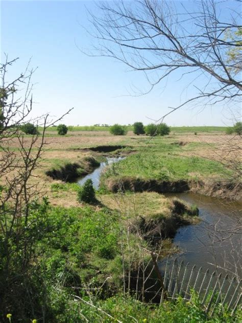 southeastern great plains riparian forest texas parks