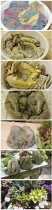 Pflanzen Kübel Beton : pflanzschale pflanzen wachsen in ihrer hand garten diy beton pinterest g rten ~ Sanjose-hotels-ca.com Haus und Dekorationen