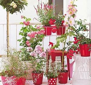 balkon ideen fur jede himmelsrichtung sommer und oder With balkon teppich mit tapete rosa