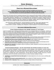 What Is A Business Resume Definition by Exle Director Of Business Development Resume Free Sle