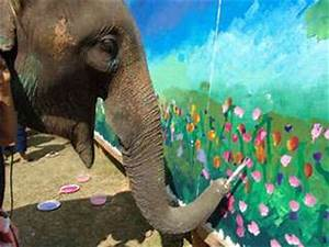 Animals Painting Unaided: Thai Elephants Paint on Canvas