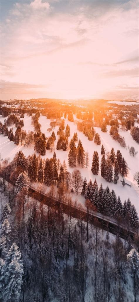 Sunrise Phone Wallpaper 1080x2340 023