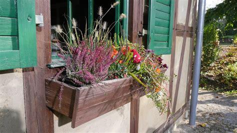 Herbst Winterbepflanzung Garten by Herbst Und Winter Auf Balkon Und Terrasse Mdr De