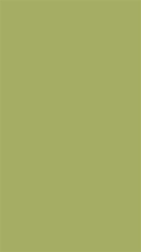 olive green wallpaper gallery