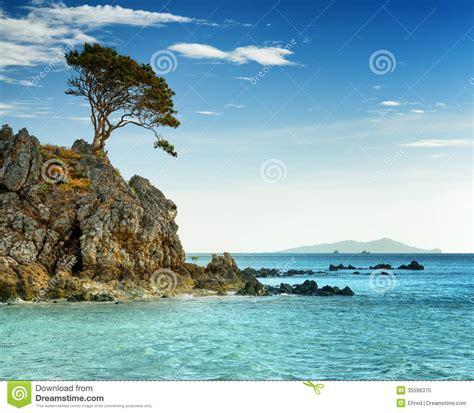 tropical island landscape tropical landscape coron island philippines royalty free stock photo image 35596375