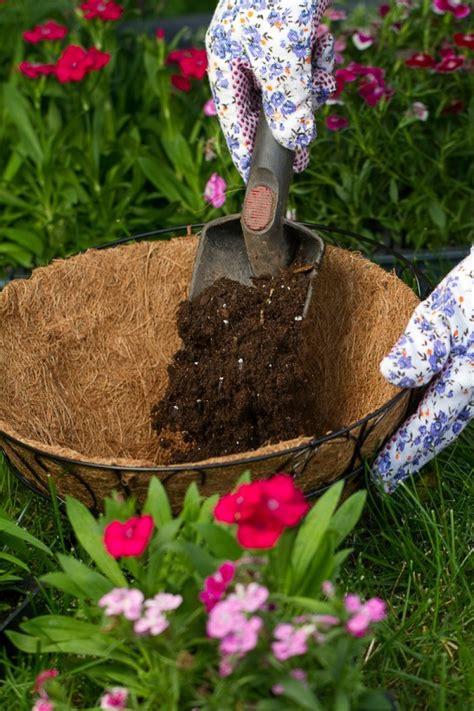 reusing potting soil thriftyfun
