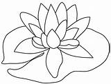 Lily Pad Drawing Coloring Pages Getdrawings sketch template