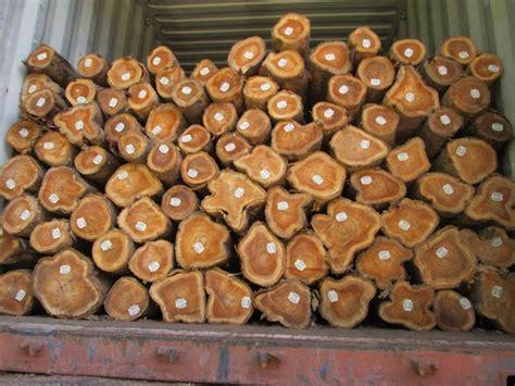 teak wood logswholesale teak logsteak wooden logs exporters