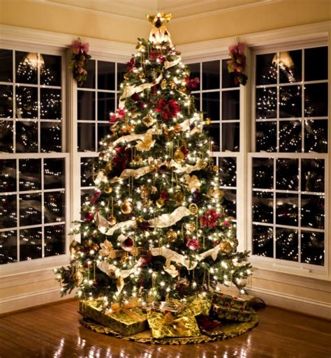 christmas decor  home  exterior christmas lights