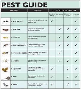 Leaf Defier® System to Minimize Pests - Pest Control ...