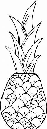 Coloring Pineapple Pages Clipart Clip Printable Print Drawing Teenagers Line Apple Hawaii Pine Clipartpanda Drawings Hd Colouring Painting Collection Tumblr sketch template