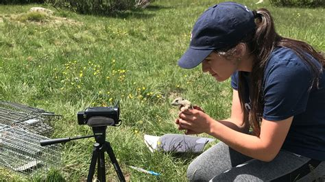 A Day in the Life of a Field Biologist | University of San ...