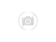 Jesus Cat Meme