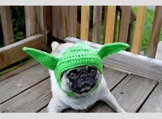 Dogs in Star Wars Costumes Darth Vader, Yoda, Ewok 29