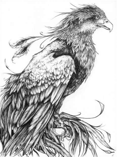 Calm realistic black-and-white waiting phoenix tattoo design | Tattoos | Phoenix drawing