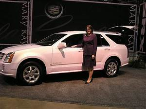 Mary Automobile Bayeux : the automobile and american life some mary kay pink cadillac photos ~ Medecine-chirurgie-esthetiques.com Avis de Voitures