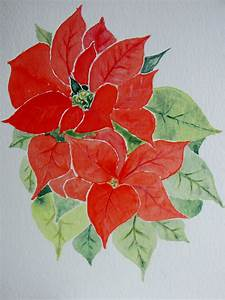 Weihnachtsstern Pflanze Kaufen : weihnachtsstern foto bild kunstfotografie kultur ~ Michelbontemps.com Haus und Dekorationen
