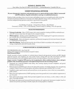 chief financial officer resume samples examples With cfo resume writing services