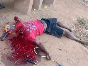 Beware Of DOGS(GRAPHIC IMAGES) - Pets - Nigeria