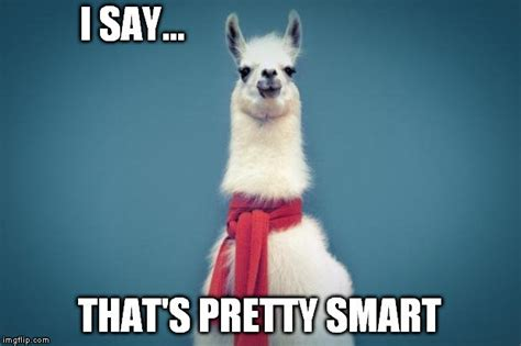 Llama Birthday Meme - how is underwater welding accomplished 187 science abc