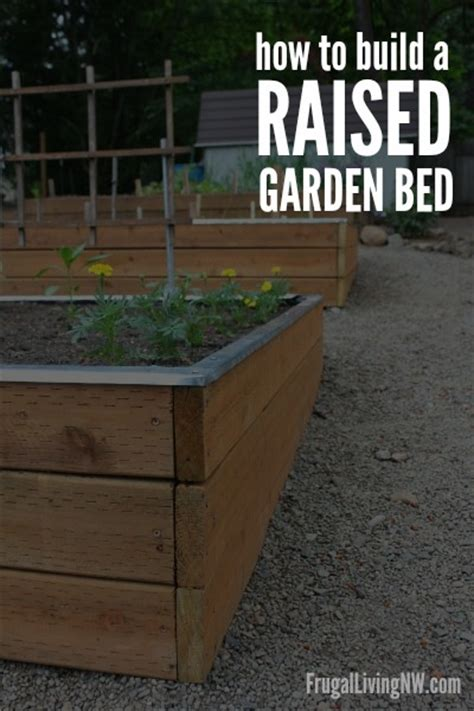 build  raised garden bed gardening
