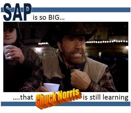 Sap Memes - sap is so big that chuck norris is still learning humor quotes brain games pinterest