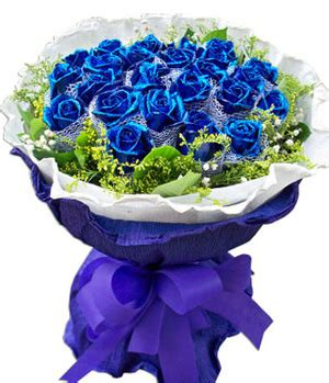 Blue Dream 19 Stems Blue Roses Delivery China