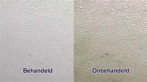 schimmel in badkamer verwijderen plafond schimmels badkamerplafond verwijderen