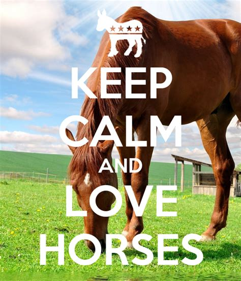 horses calm keep horse quotes poster signs equestrian why posters ride shirts matic check paarden keepcalm calming website visit site