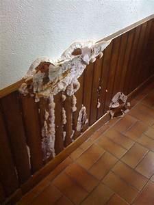 Probleme D Humidite Mur Interieur : traitement humidit de l 39 air par d shumidification isosec ~ Melissatoandfro.com Idées de Décoration