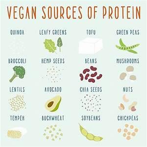 Plantaardige proteine