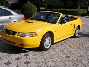 1999 Ford Mustang - Pictures - CarGurus