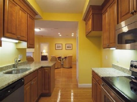 yellow paint colors for kitchen amazing yellow color kitchen paint my home design journey 1989